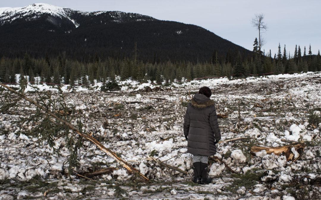 Výstavbou plynovodu je porušováno právo kmenové i kanadské